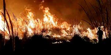 Incendio forestal en Luján
