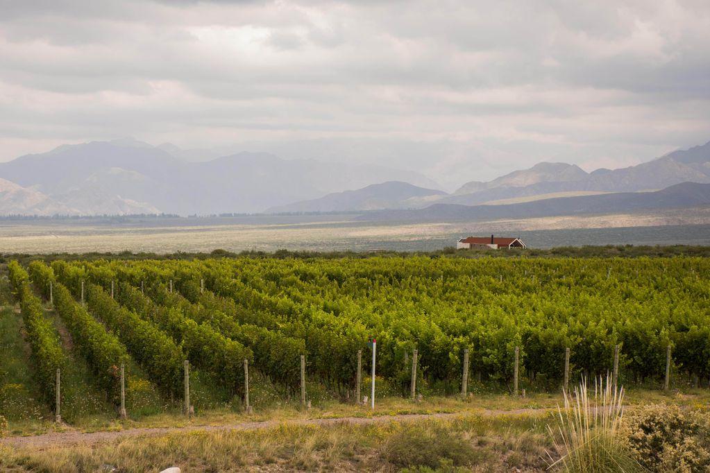Turismo: estos son los lugares que Time recomendó visitar en Mendoza