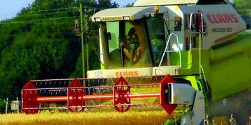 Recomiendan preparar los suelos para el próximo ciclo de los cultivos