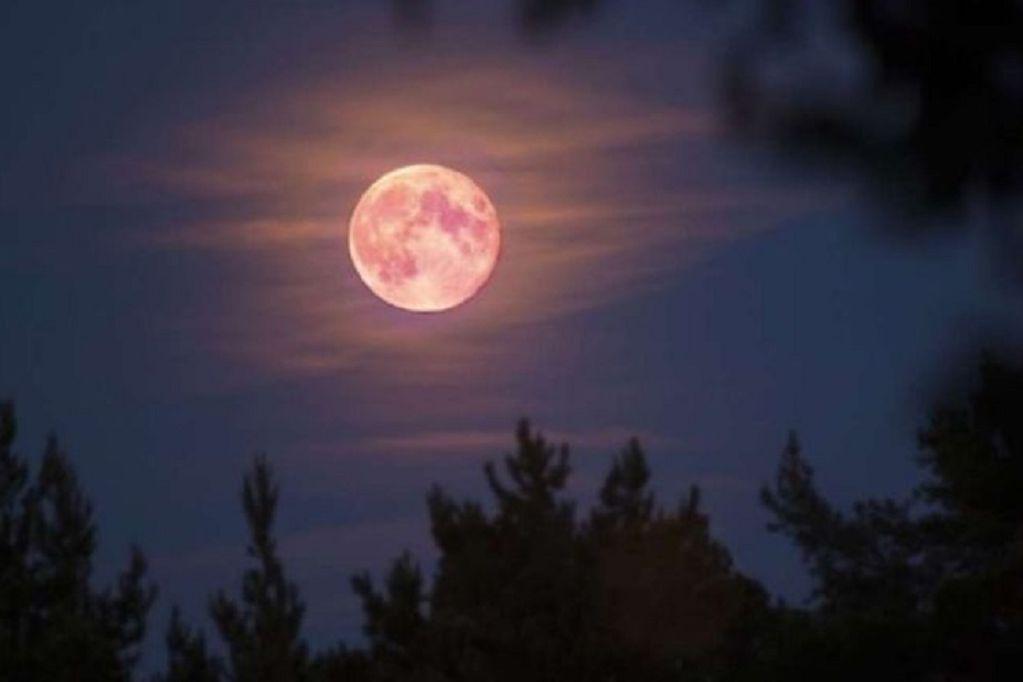 Hoy se podrá ver la superluna rosa de abril desde Argentina: por qué lleva ese nombre
