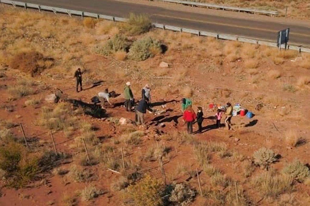 """Canale precisó que """"se identificaron huesos largos de las extremidades de un herbívoro"""". Foto: Gentileza / NeuquenInforma"""