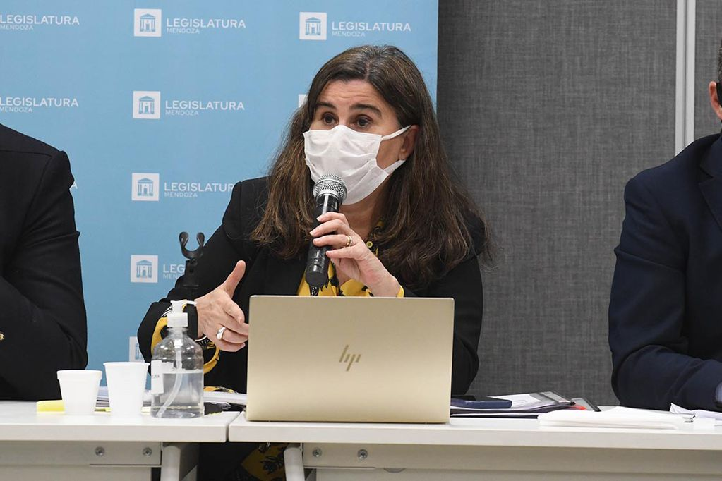Ana Maria Nadal, ministra de salud de Mendoza. Foto: José Gutiérrez / Los Andes