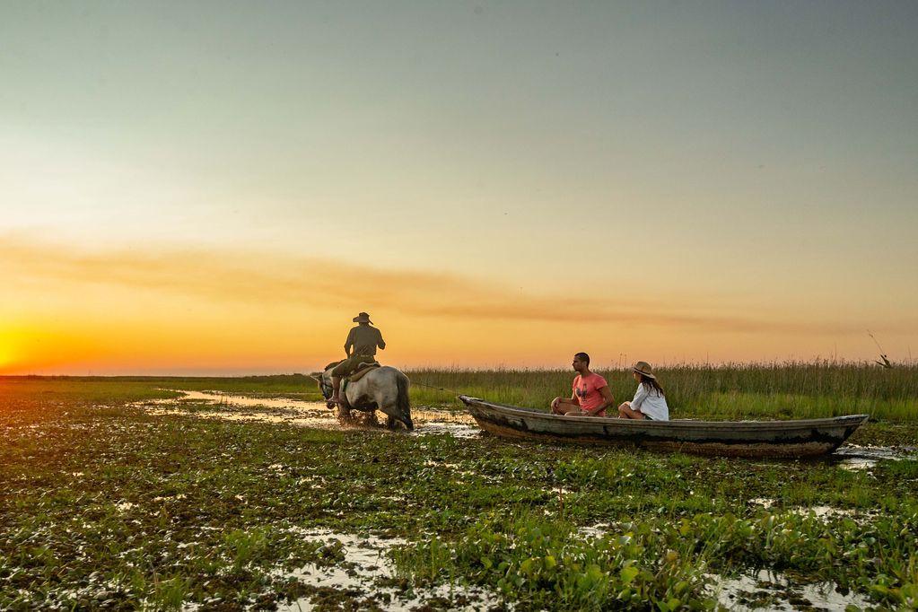 Esteros del Iberá: el paraíso ambiental correntino que nos invita a respirar pureza