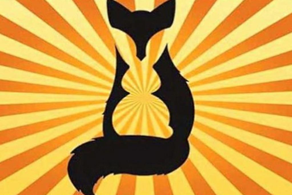 ¿Qué viste primero, zorro o conejo?, tu respuesta puede dar detalles de tu personalidad