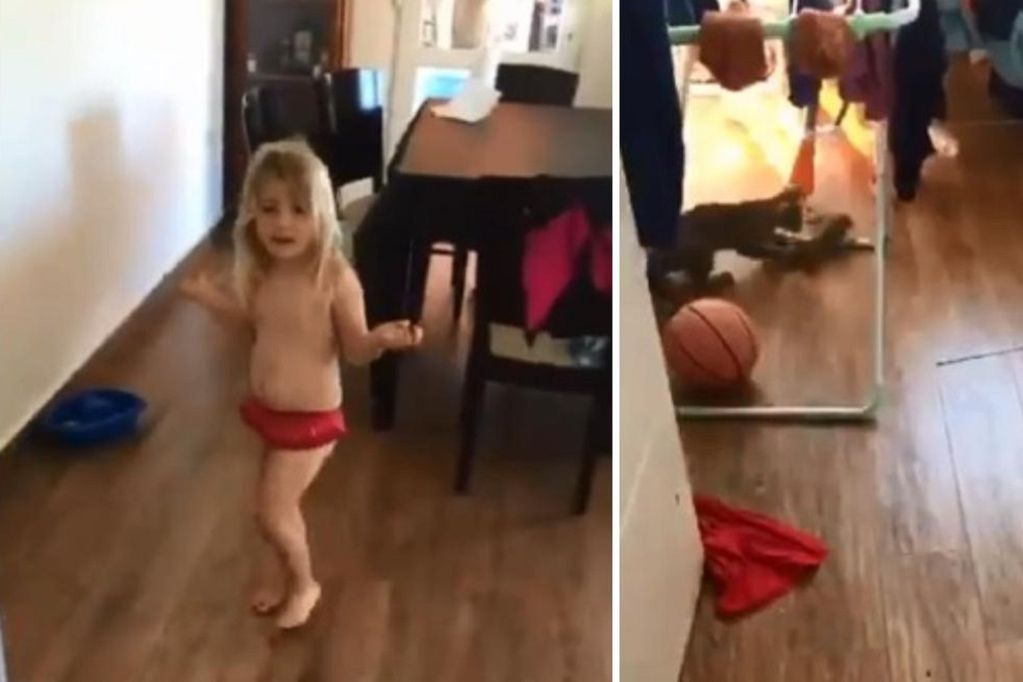 """Pensó que jugaba con un """"conejito bebé"""" y la sorpresa fue desagradable: la historia del viral del momento"""