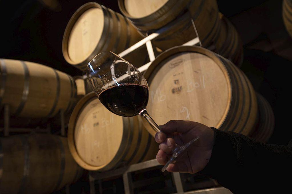El INV unificó, en una sola resolución, el listado de las variedades aptas para vinificar