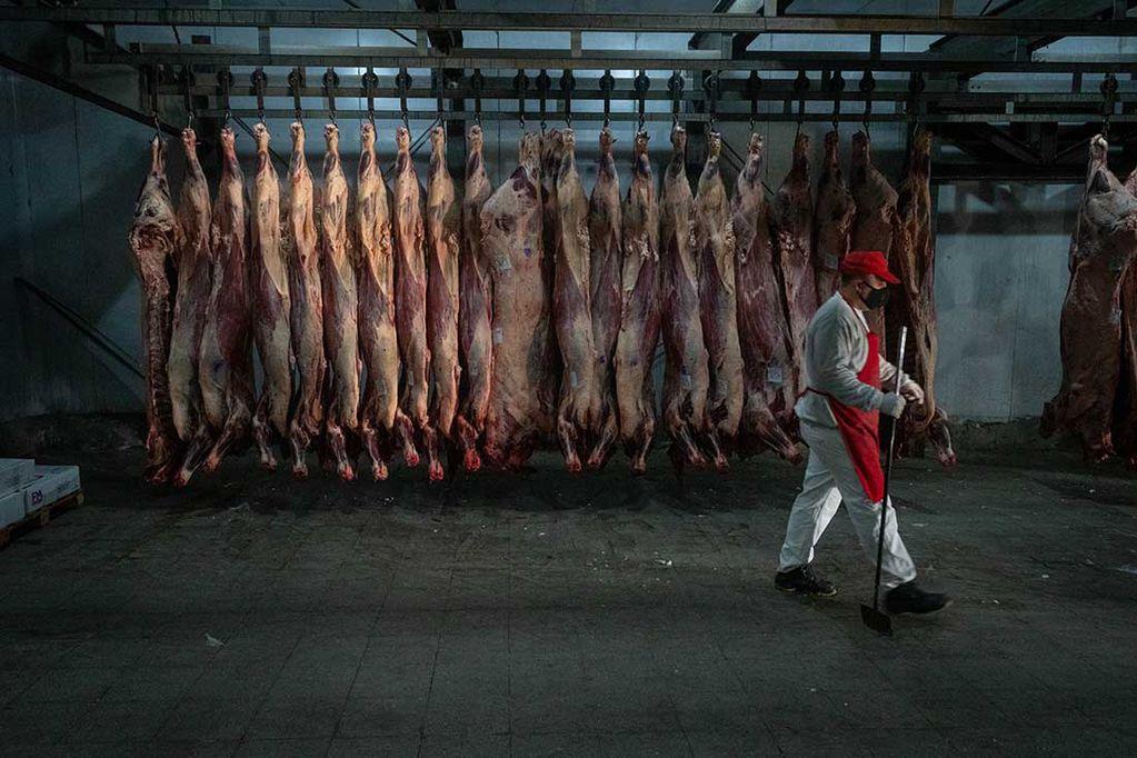 Pese a las medidas del Gobierno, la carne subió 8% en 60 días