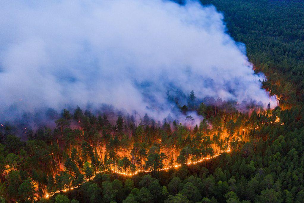 Las llamas arrasaron con más de veinte millones de hectáreas. Los Andes