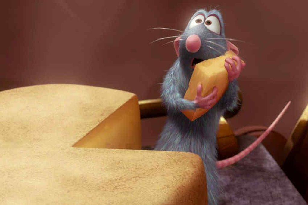 ¿Una rata en la cocina? Bake Off Argentina tuvo una visita inesperada