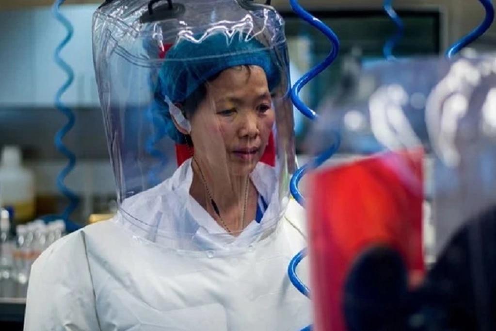 """La famosa """"mujer murciélago"""" de China advirtió que seguirán surgiendo nuevas mutaciones mortales de Covid-19."""