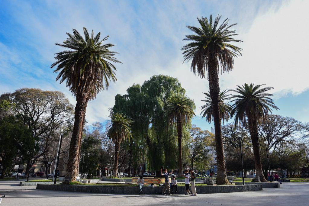 """Pronóstico de hoy: """"tiempo bueno"""" con ascenso de la temperatura en Mendoza"""