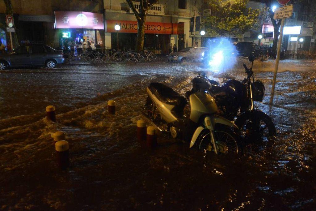 Calles anegadas, árboles caídos y filtraciones en casas por la tormenta: hubo 35 intervenciones de emergencia en Mendoza