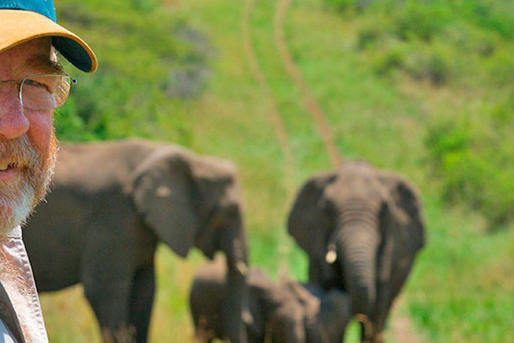 La emocionante historia del día que una manada de elefantes asistió al funeral de su cuidador para despedirlo