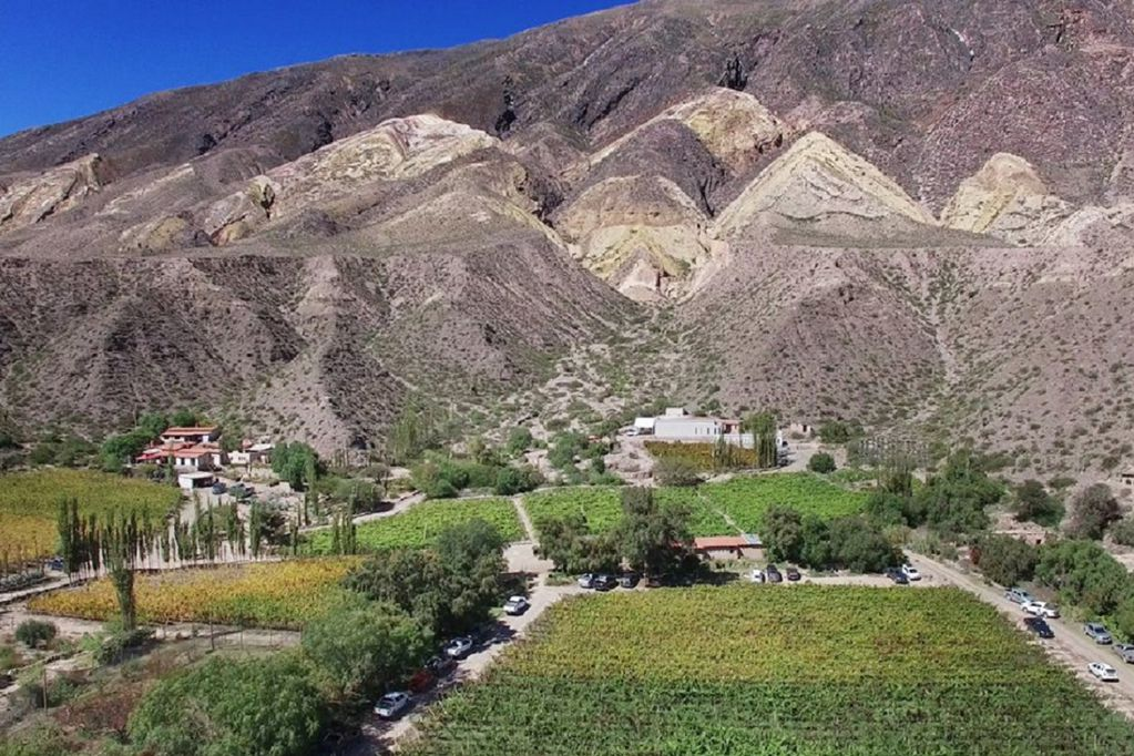 Jujuy: el desafío de hacer vinos entre las nubes y en un terroir extremo