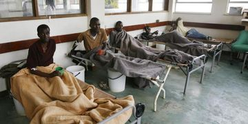 Brote de cólera en Níger