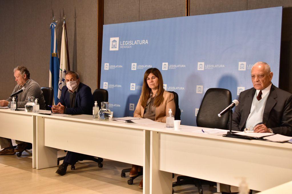 Legisladores mendocinos junto a pares de otras provincias analizaron el decreto de Piñera por la plataforma continental