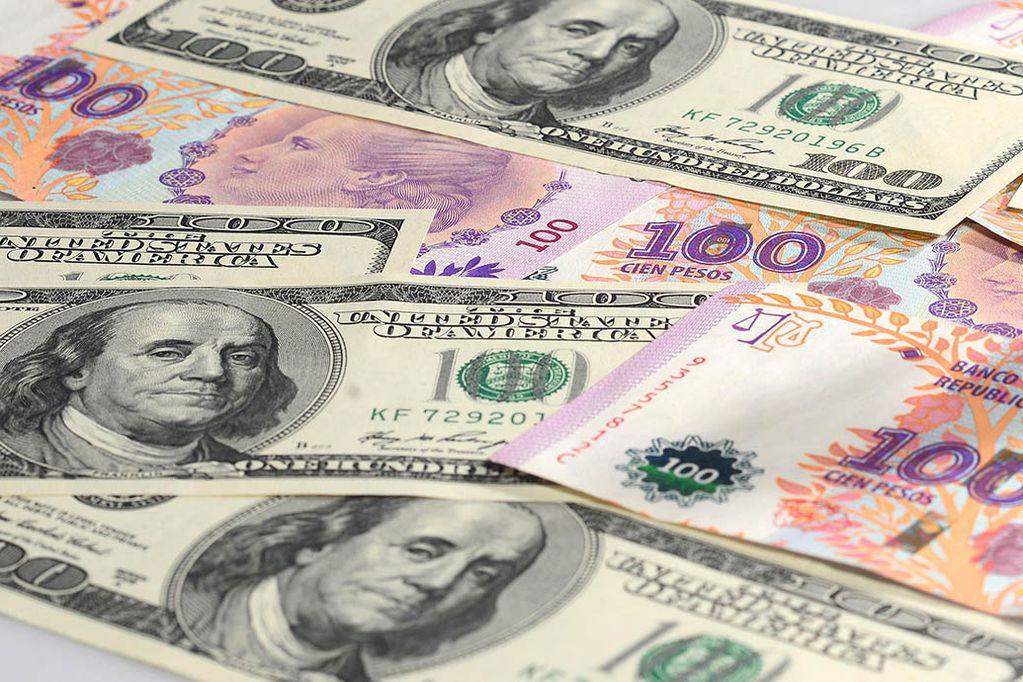 Dólar hoy: el blue bajó y el oficial se mantiene, después de las elecciones PASO